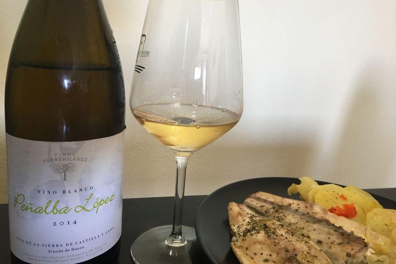 cata de vinos penalba lopez 2014
