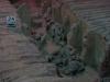 fouilles-au-tombeau-2