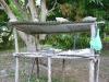 Nouvelle Calédonie : morceaux choisis