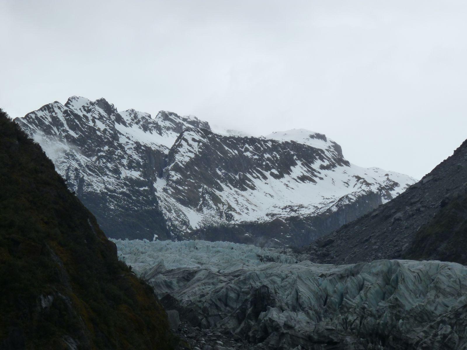 fox-glacier-1