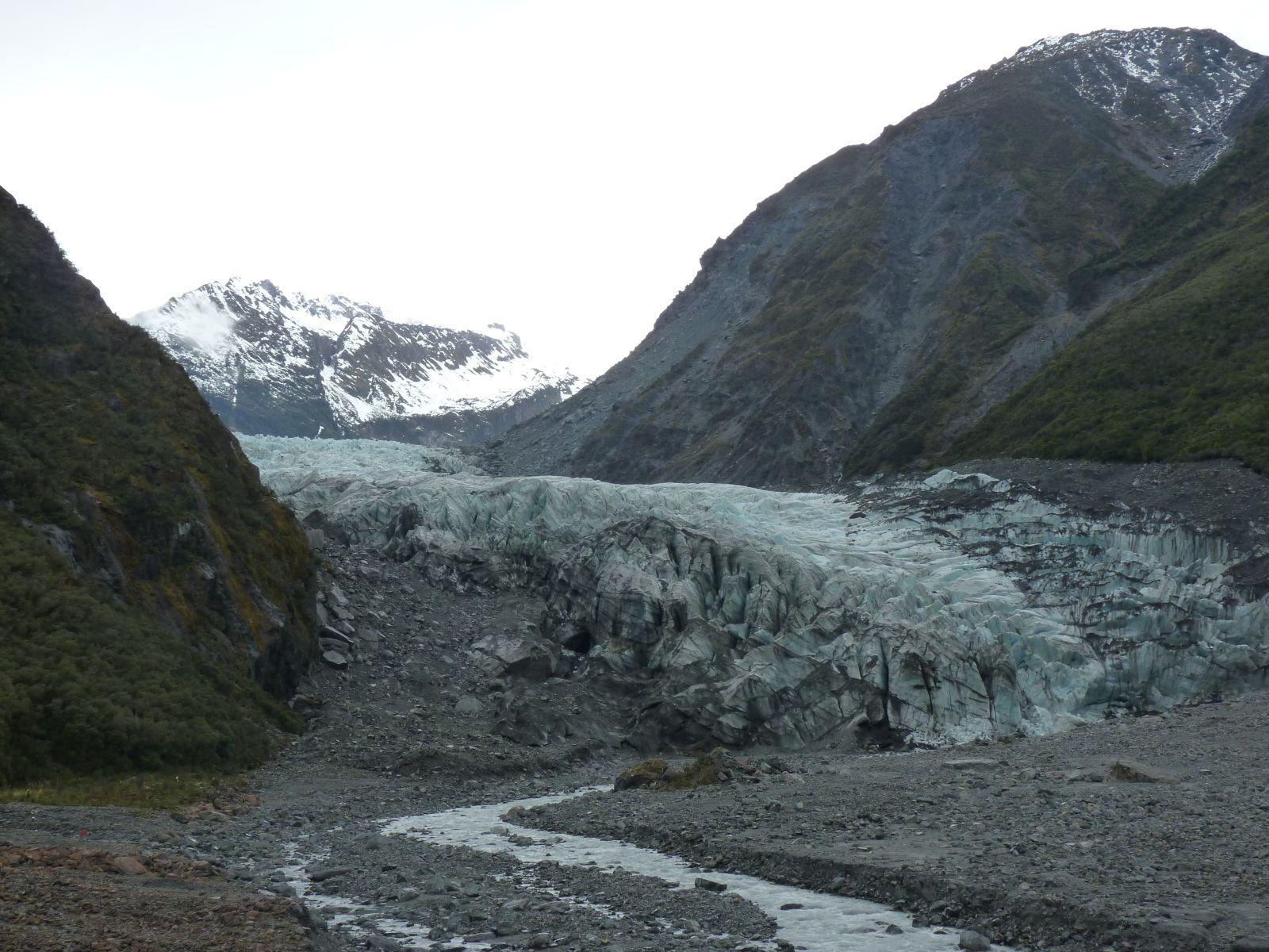 fox-glacier-2