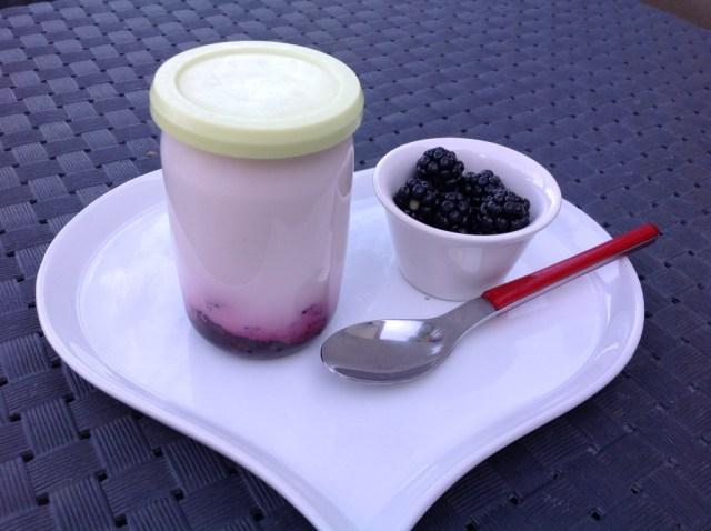 yaourts sur fond de mûres 2
