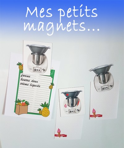 magnets thermomix