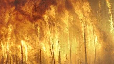 Photo of Risque accru d'incendies en forêt au Luxembourg