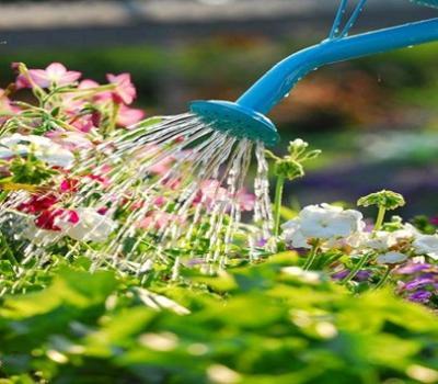 Initiation jardinage au naturel tout for Tout sur le jardinage