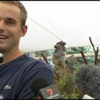 Those Koalas Having Sex Behind Andy Roddick