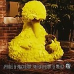Big Bird Stars in Sarcastic New Ad from the Obama Campaign: VIDEO