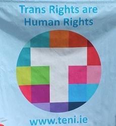 TENI Flag