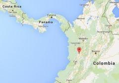 Toro Valle Colombia