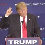 Donald Trump hairspray
