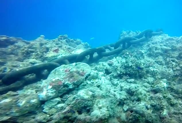 anchor destroy a reef