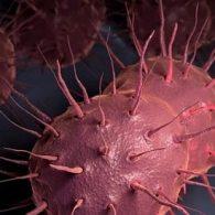 super gonorrhea