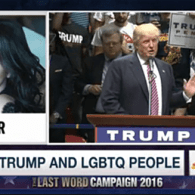 Cher Talks to Lawrence O'Donnell About Trump's Promise to LGBT People: 'Oh Come On' – WATCH