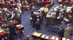 mccain no vote