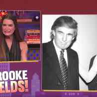 The Pick-Up Line Trump Used on Brooke Shields is as Excruciating as You'd Expect: WATCH
