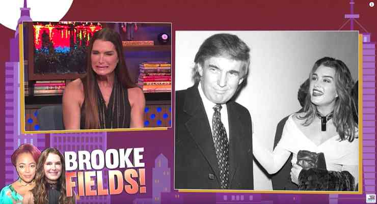 brooke shields donald trump