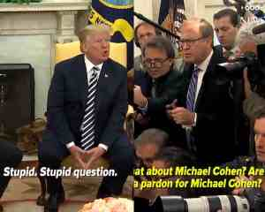 jonathan karl trump stupid question