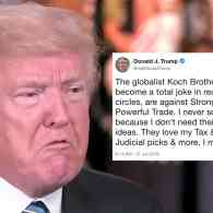 Trump Calls Conservative Billionaire Activist Koch Brothers a 'Total Joke,' Taps 3D Guns, Limbaugh, Collusion in Tuesday Tweetstorm