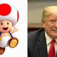 toad game on tiny