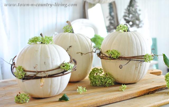 10 Autumn Decor Ideas on Vine Decor Ideas  id=69443