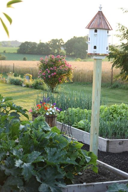Raised Vegetable Garden Table
