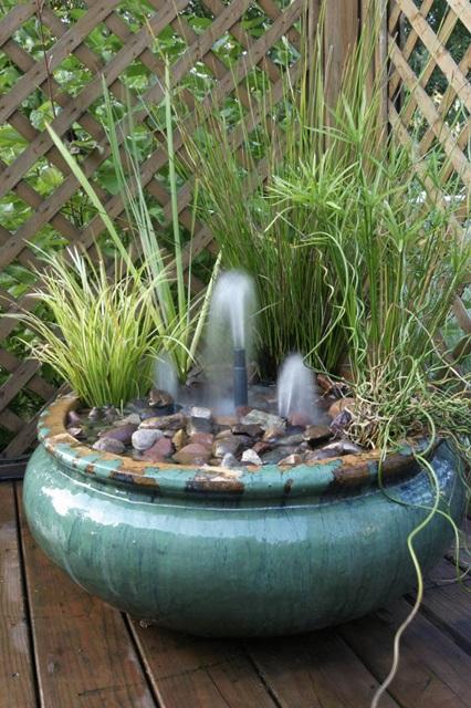 Aquatic Plants Fountains
