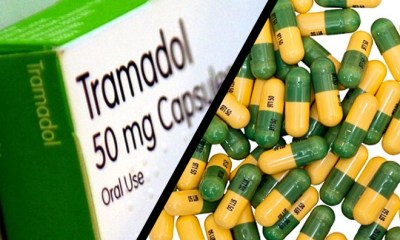 Seized 40-Container Loads Of Tramadol: USD$280, 000 Bribe Exposed