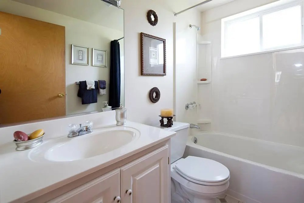 1 & 2 Bedroom Luxury Apartments for Rent in Grand Island ... on Apartment Bathroom  id=68942