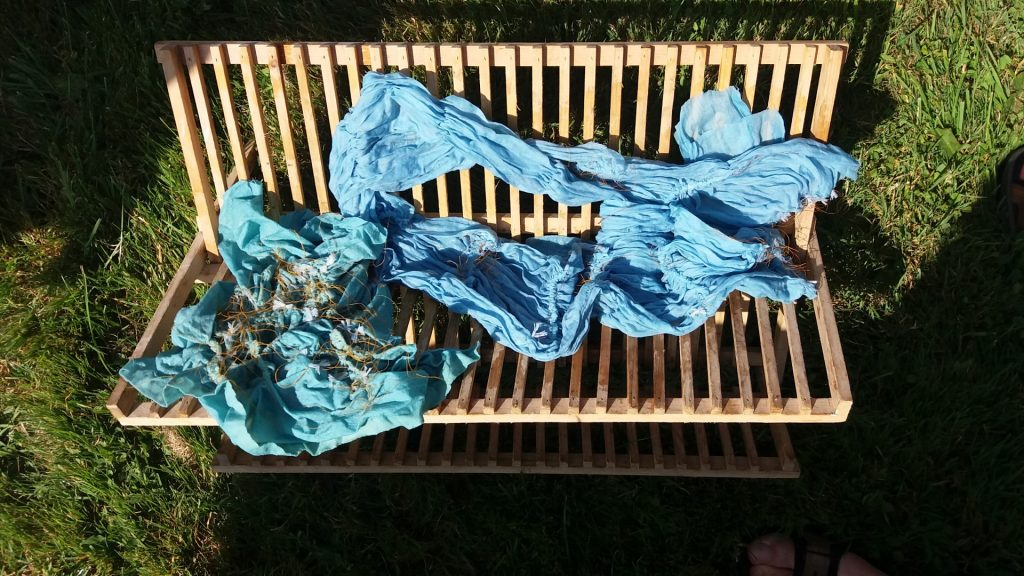 fabric airing after dyeing in indigo