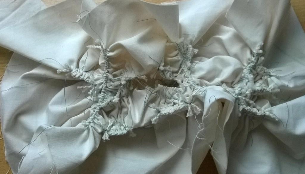 leaf and stem cotton(2)
