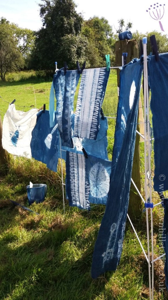 shibori workshops fabrics drying (1)