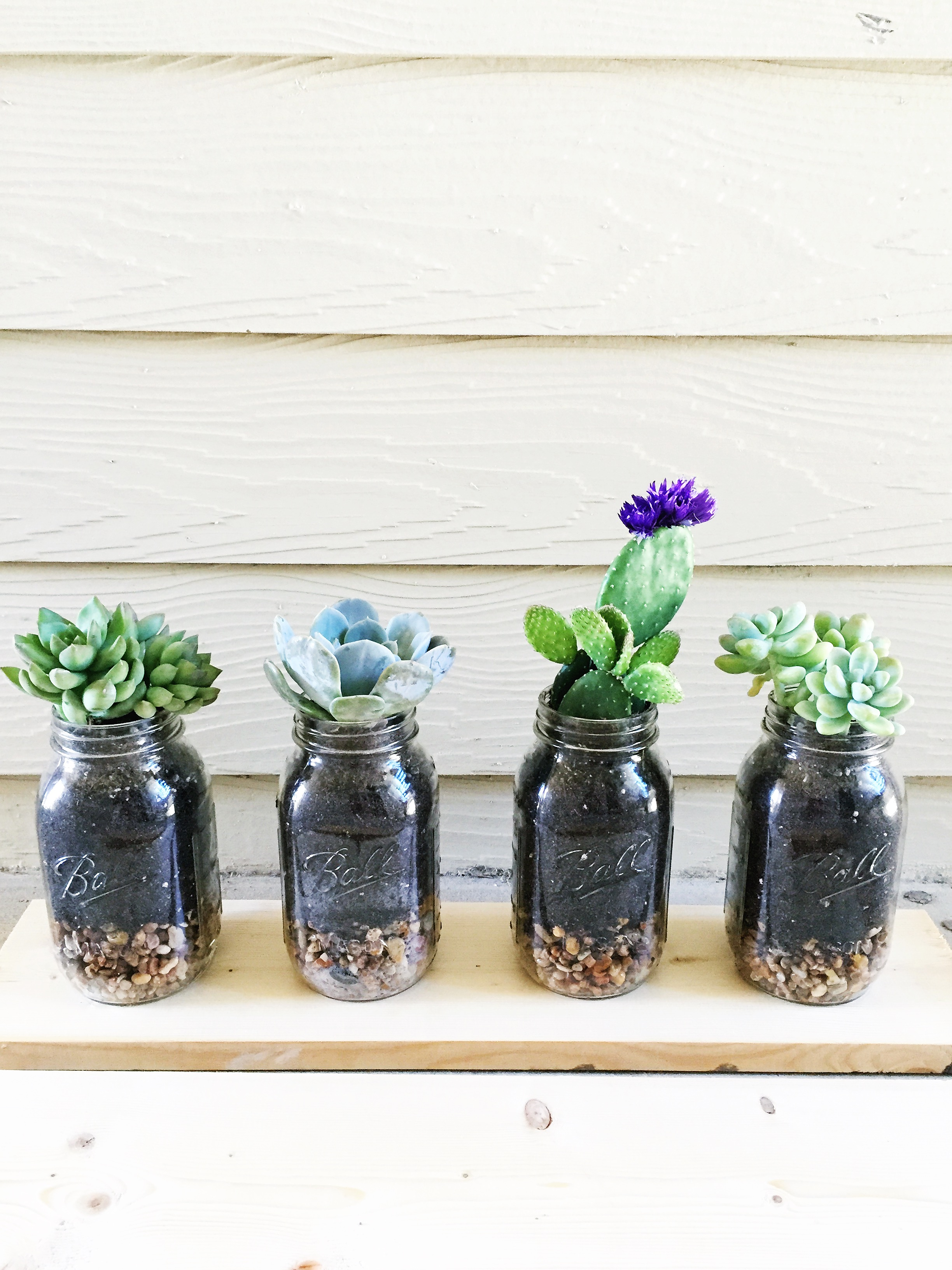 Diy mason jar succulents town lifestyle design diy mason jar succulents town lifestyle design the perfect homemade mothers solutioingenieria Gallery