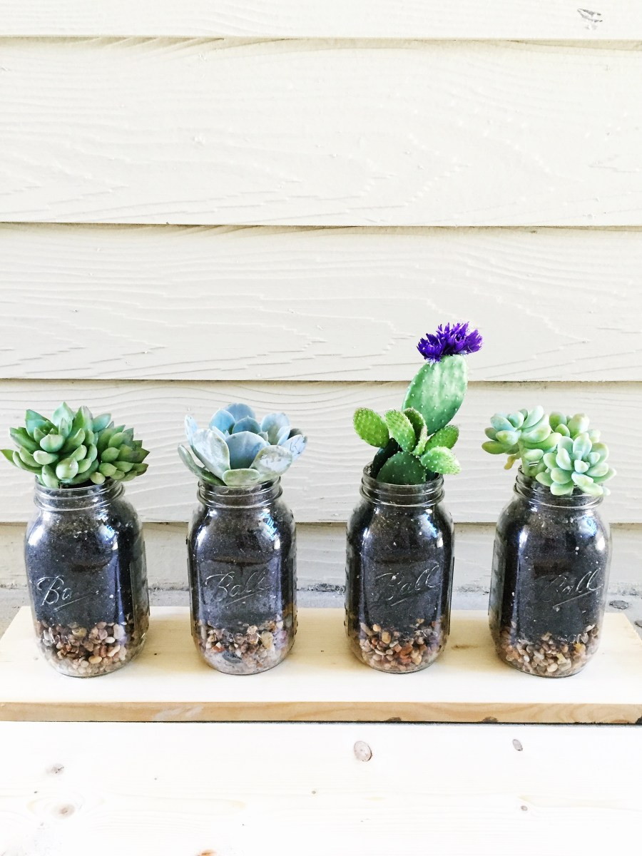DIY: Mason Jar Succulents