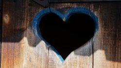 heart-2209184_1920