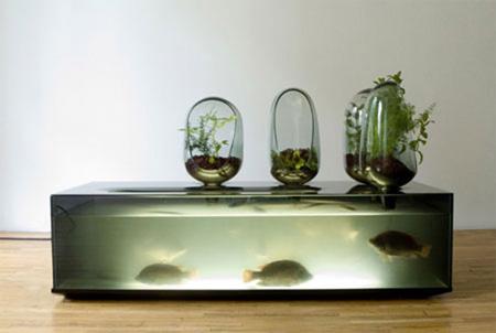 Local River Aquarium