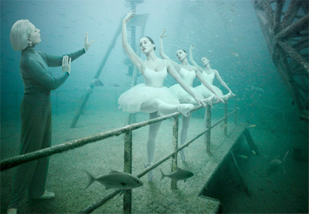 Life Below The Ocean
