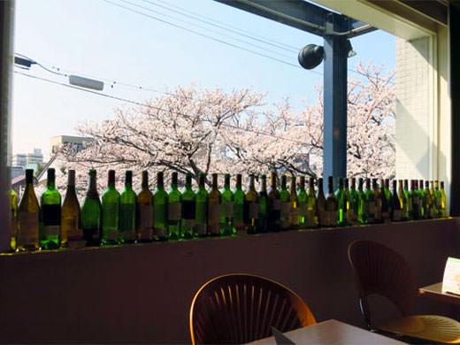 カフェ・ブリッジ 満開の桜を花見 いたち川沿いカフェ