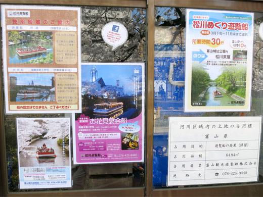 日本さくら名所100選 満開桜咲く松川遊覧船に乗船