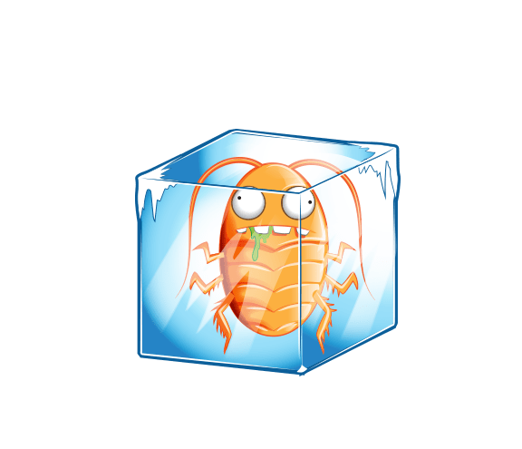 Cold Cockroach