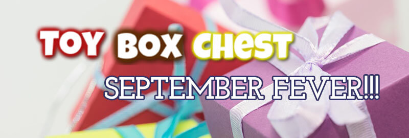 Toy Box Chest September Fever