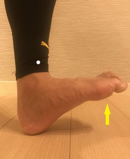 脛骨筋の筋トレ