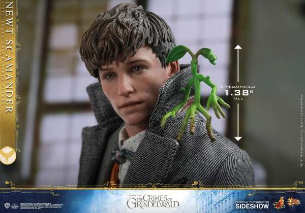 fantastic-beasts-the-crimes-of-grindwald-newt-scamander-sixth-scale-figure-hot-toys-904194-14