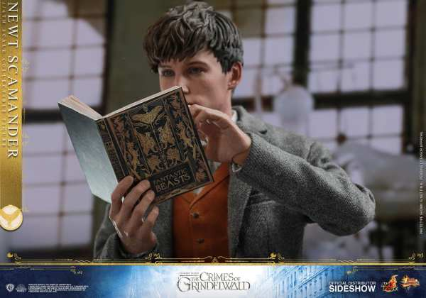 fantastic-beasts-the-crimes-of-grindwald-newt-scamander-sixth-scale-figure-hot-toys-904194-15