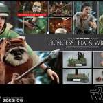 hot-toys-princess-leia-and-wicket-sixth-scale-figure-set-star-wars-mms551-img22