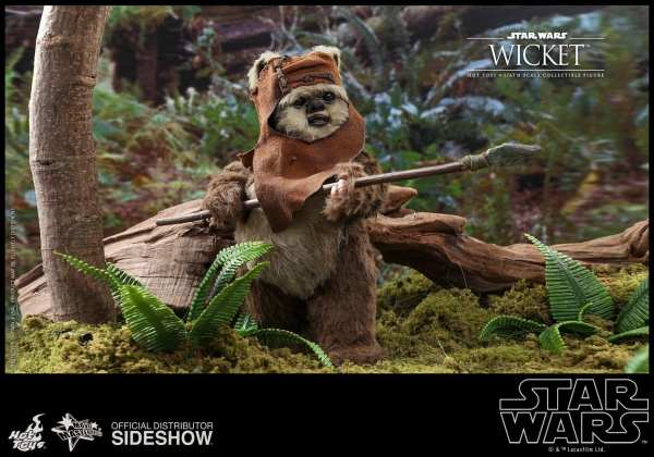 hot-toys-wicket-sixth-scale-figure-star-wars-collectibles-mms550-img05