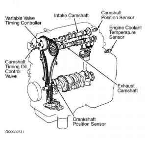 Celica Corolla Echo Highlander L Cyl Mr Prius  Toyota
