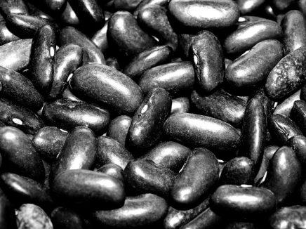 habas negras judías proteínas LAS HABAS: UNA PLANTA AMBIVALENTE