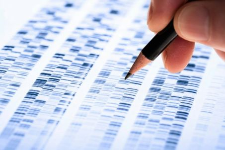 """genética genes genoma humano investigación EL CONTROVERTIDO CIENTÍFICO HE JIANKUI """"DISEÑADOR DE BEBÉS"""" ENTRA EN LA LISTA DE LOS MÁS RELEVANTES DEL 2018"""