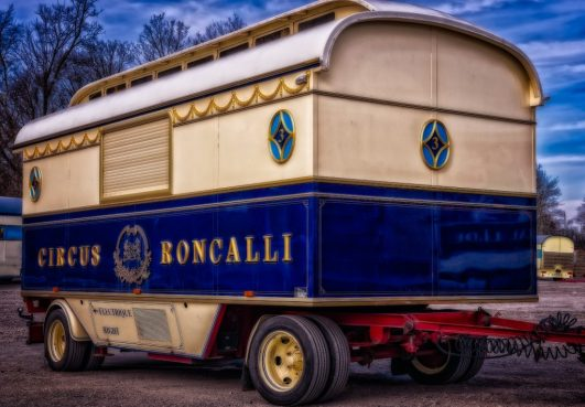 hologram  circus roncalli animals respect HOLOGRAMAS: LA MAGIA EN EL CIRCO