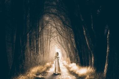 via strada cammino ragazza notte boscho